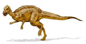 Micropachycephalosaurus shortest dinosaur names